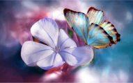 The splendor of love